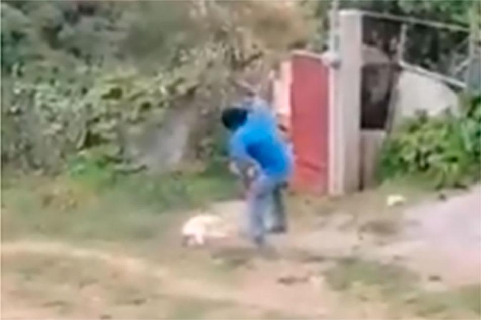 asesina a perrita a machetazos