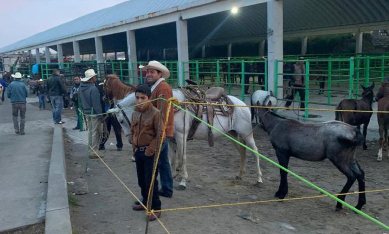 Comerciantes del mercado de San Bernabé