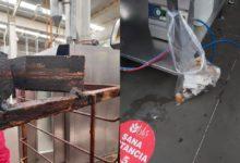 Suspenden panificadora en Tecámac; tenía ratas en anaqueles