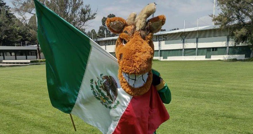 Desde hace 20 años, Ricardo Arturo Servín, porta con orgullo a la mascota auriverde