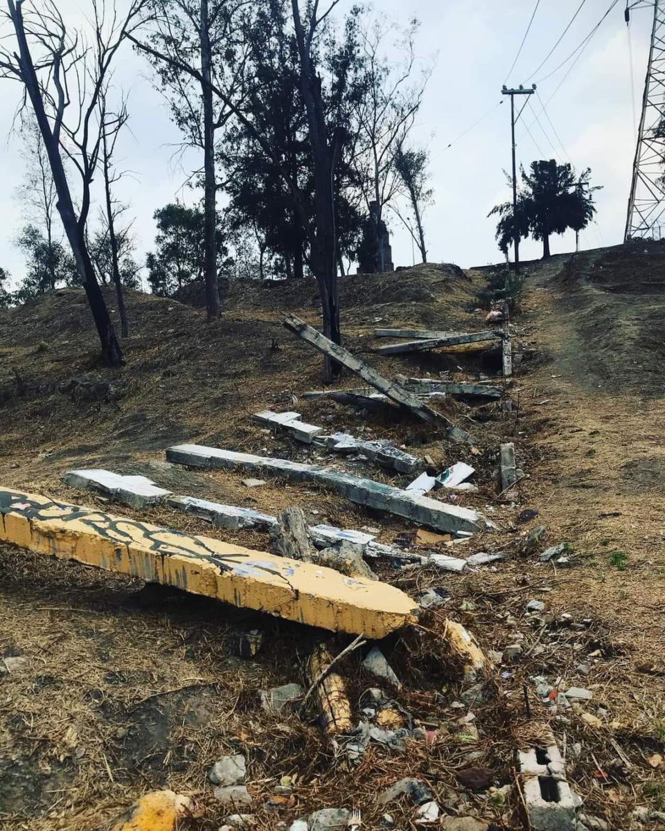 Además de las llamas, también la tala clandestina atenta contra este parque