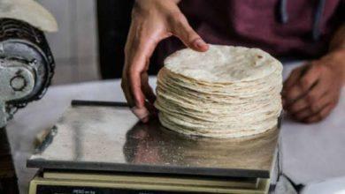 Kilo de tortillas de maíz sobre báscula