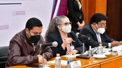 Diputados miembros de la legislatura local