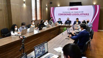 Parlamentarios en Comisión